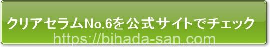 ライース クリアセラムNo.6公式サイトへ